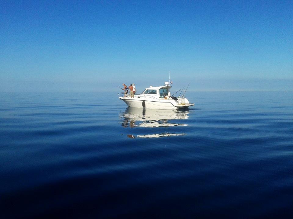 рыбалка на истрии хорватия